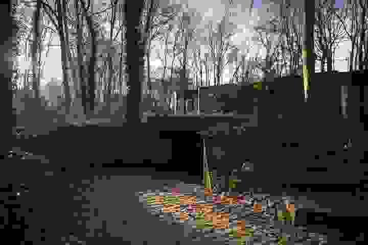 websitewebfotografie235.jpg-landscape