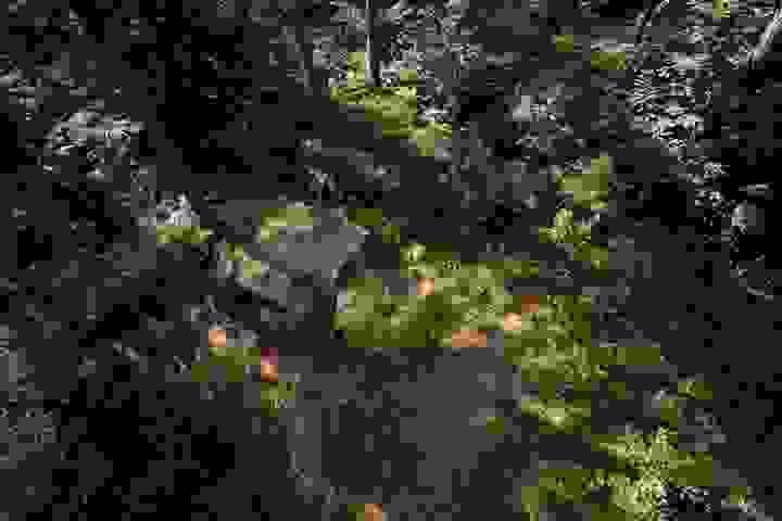 websitewebfotografie75.jpg-landscape