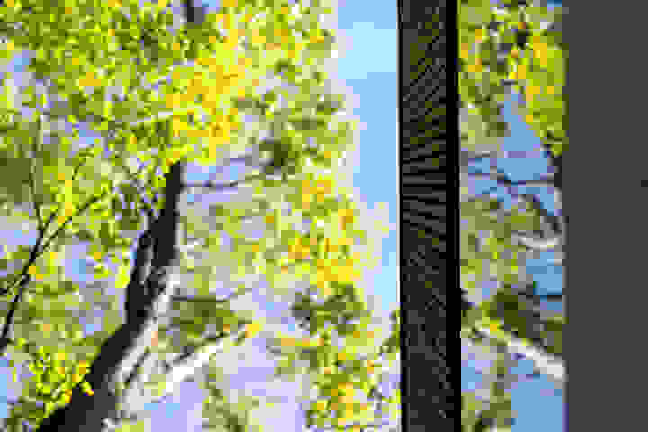 websitewebfotografie4-3.jpg-landscape
